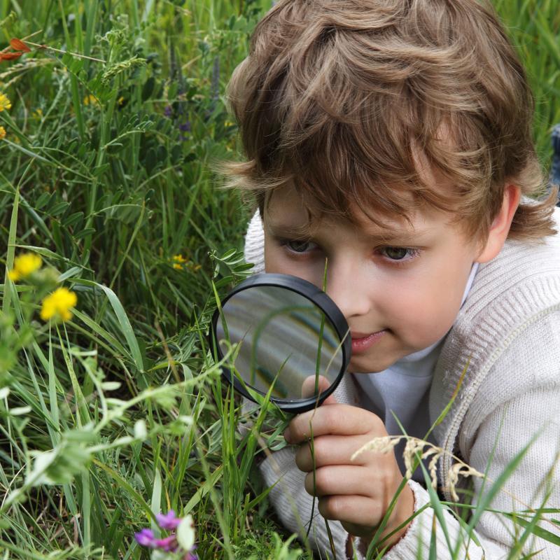 COLOURBOX3342851-Barn-og-forstørrelsesglass.jpg