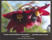 Story Plants book 2016.jpg