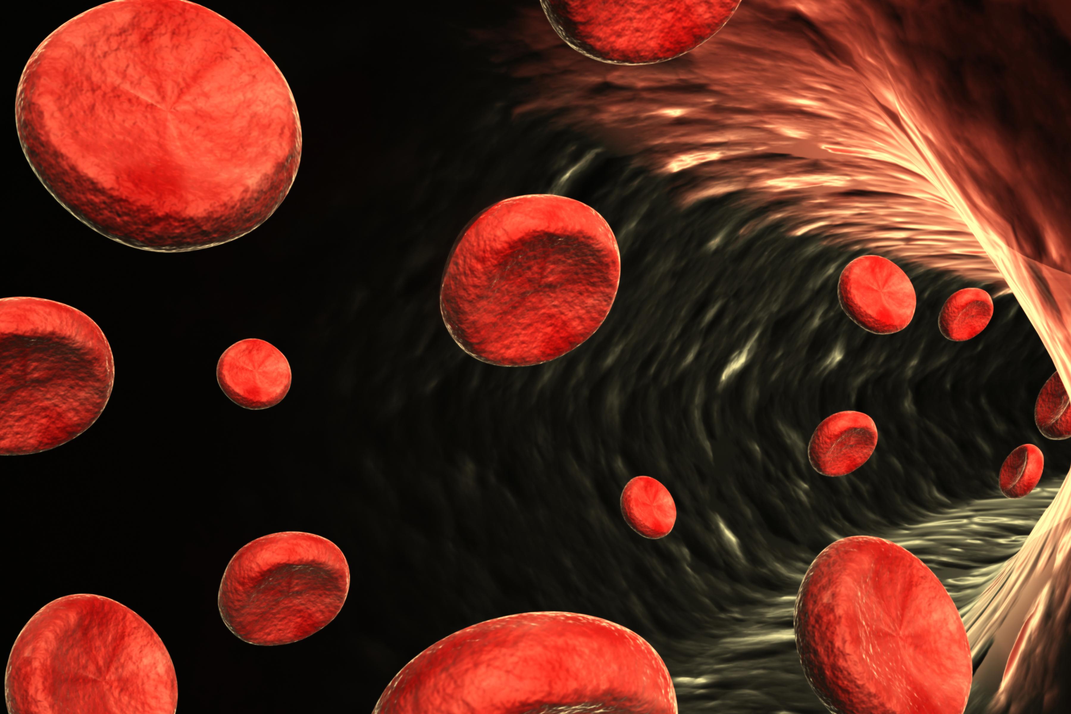blood cells.jpg